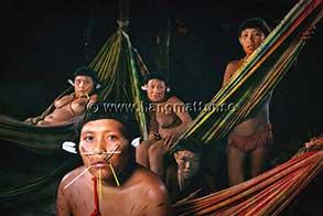 Flera hängmattor i en indianhydda